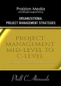 organizational project management strategies