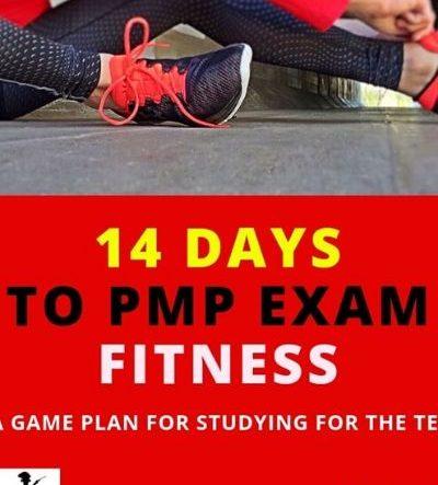 14 Days toPMP®Exam Fitness