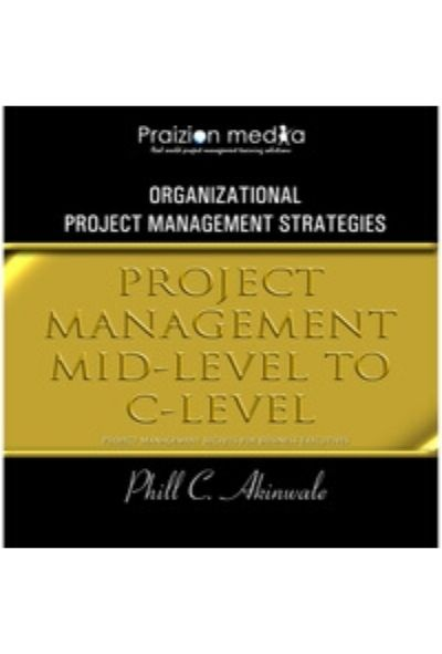 Project Management Mid-Level to C-Level
